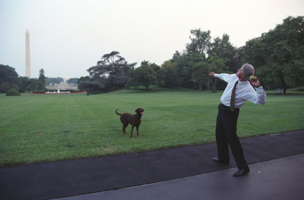 Presidents And Dogs