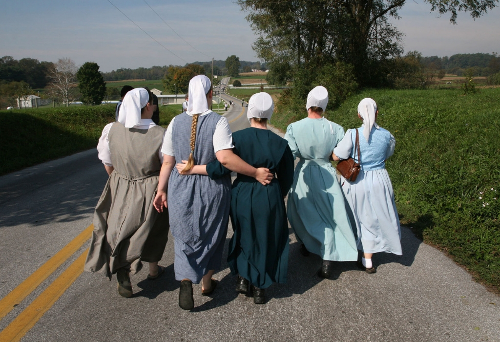 amish engagement