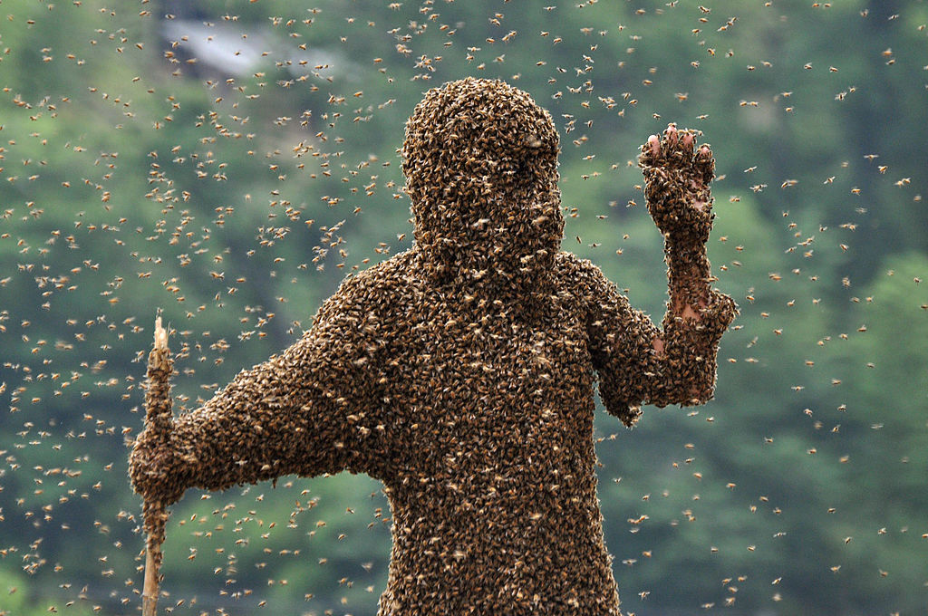 A standing person is covered from head to toe in bees.