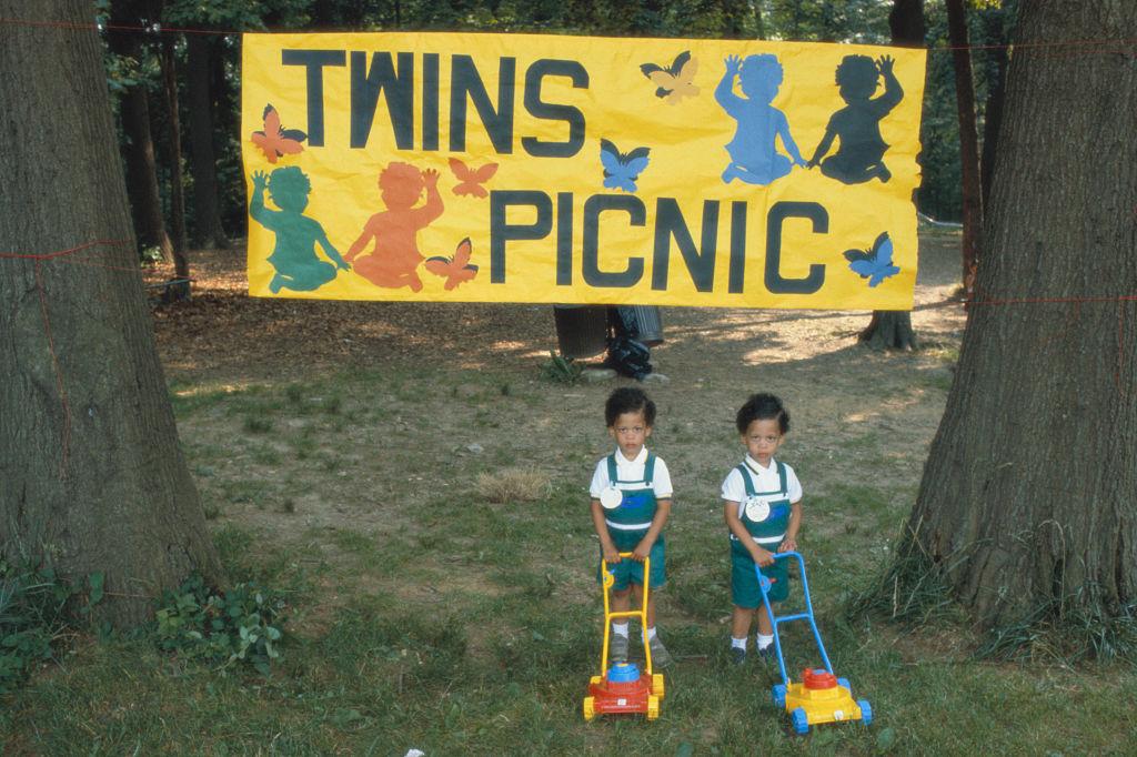 twins attend a picnic