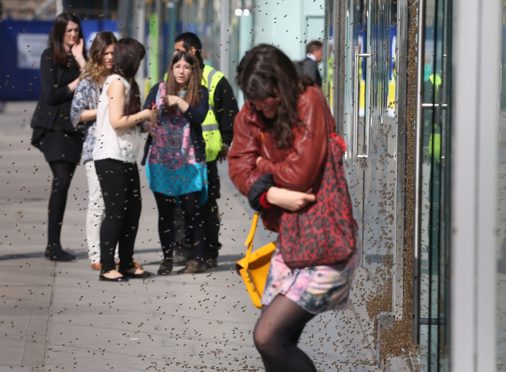 A woman crouches while walking out of a store surrounded by bees.