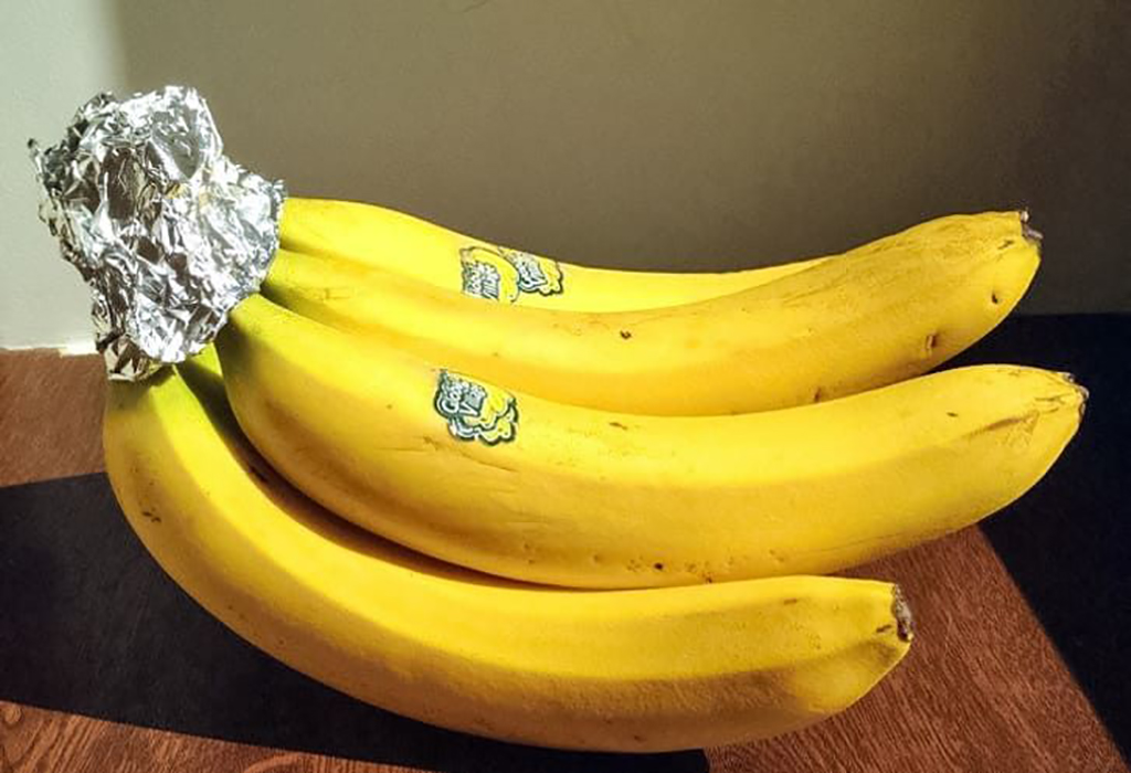 Aluminum foil wrapped around banana stem