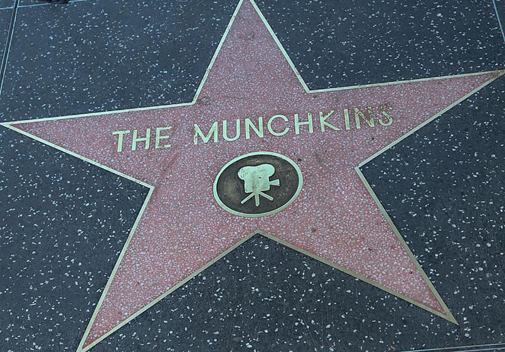 Munchkin star
