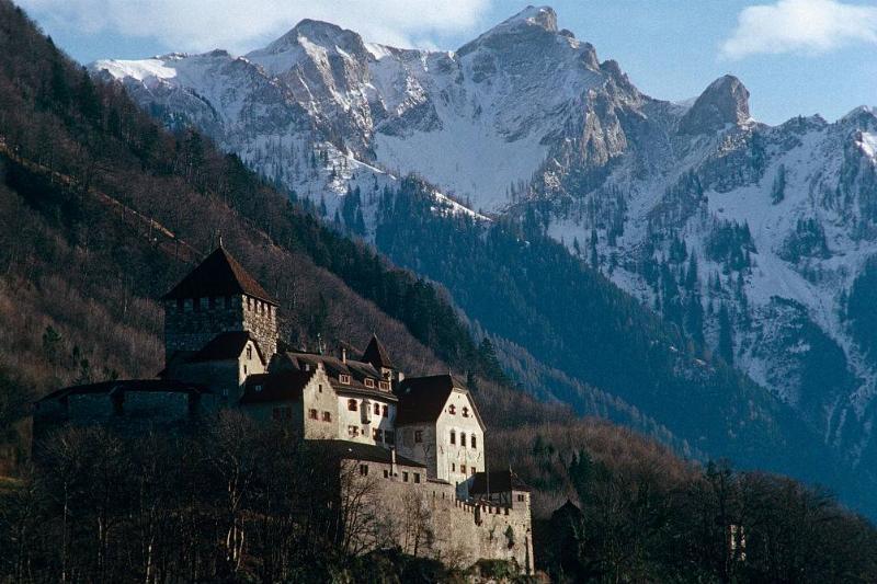 Liechtenstein is bordered by the Alpine countries of Austria and Switzerland
