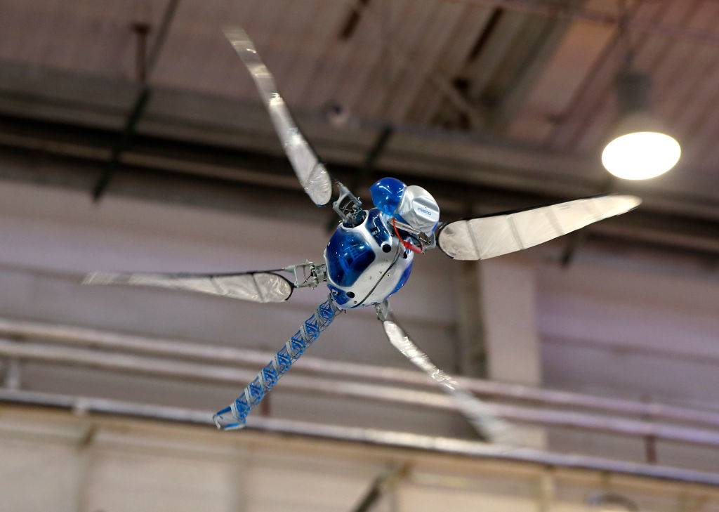 A dragonfly shaped bio-robot flies at the World Robot Conference