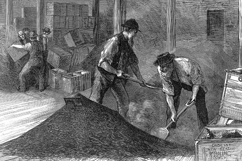 In 1874, workers shovel tea into a pile.