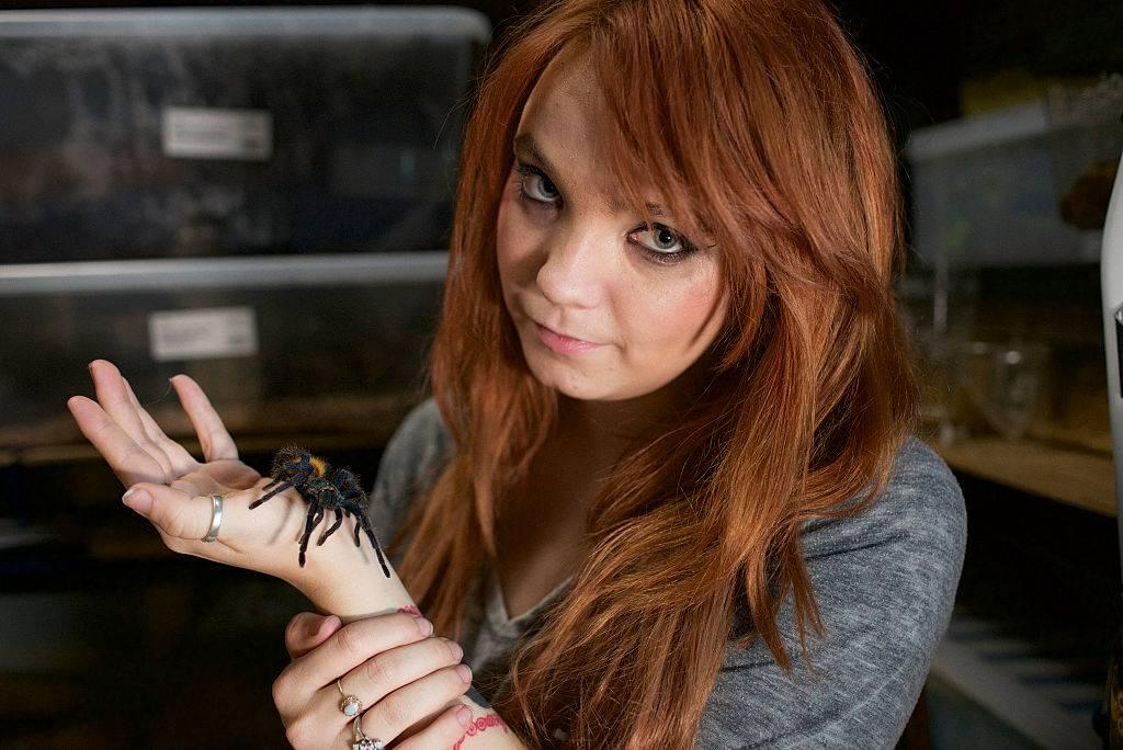 Cassandra Tainsh, 23, holds her favourite tarantula
