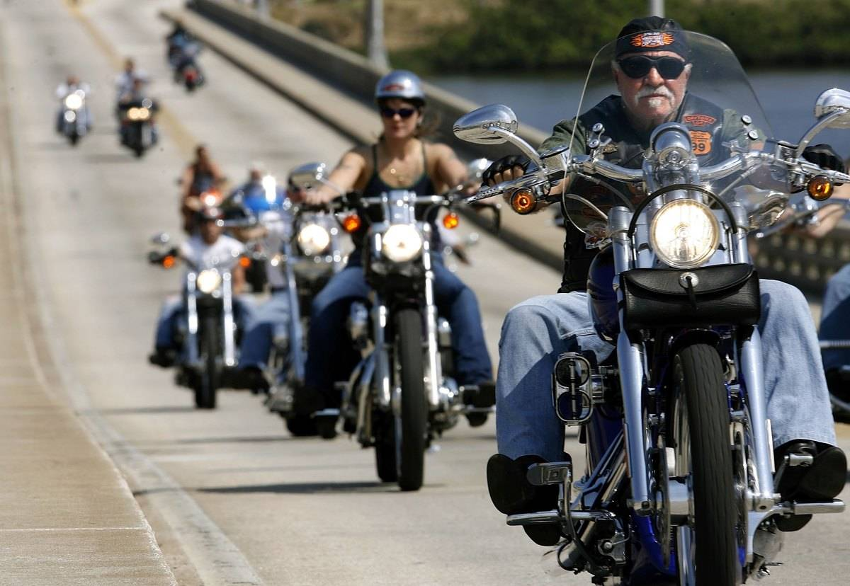 A row of motorcycle drivers ride on Harley Davidsons.