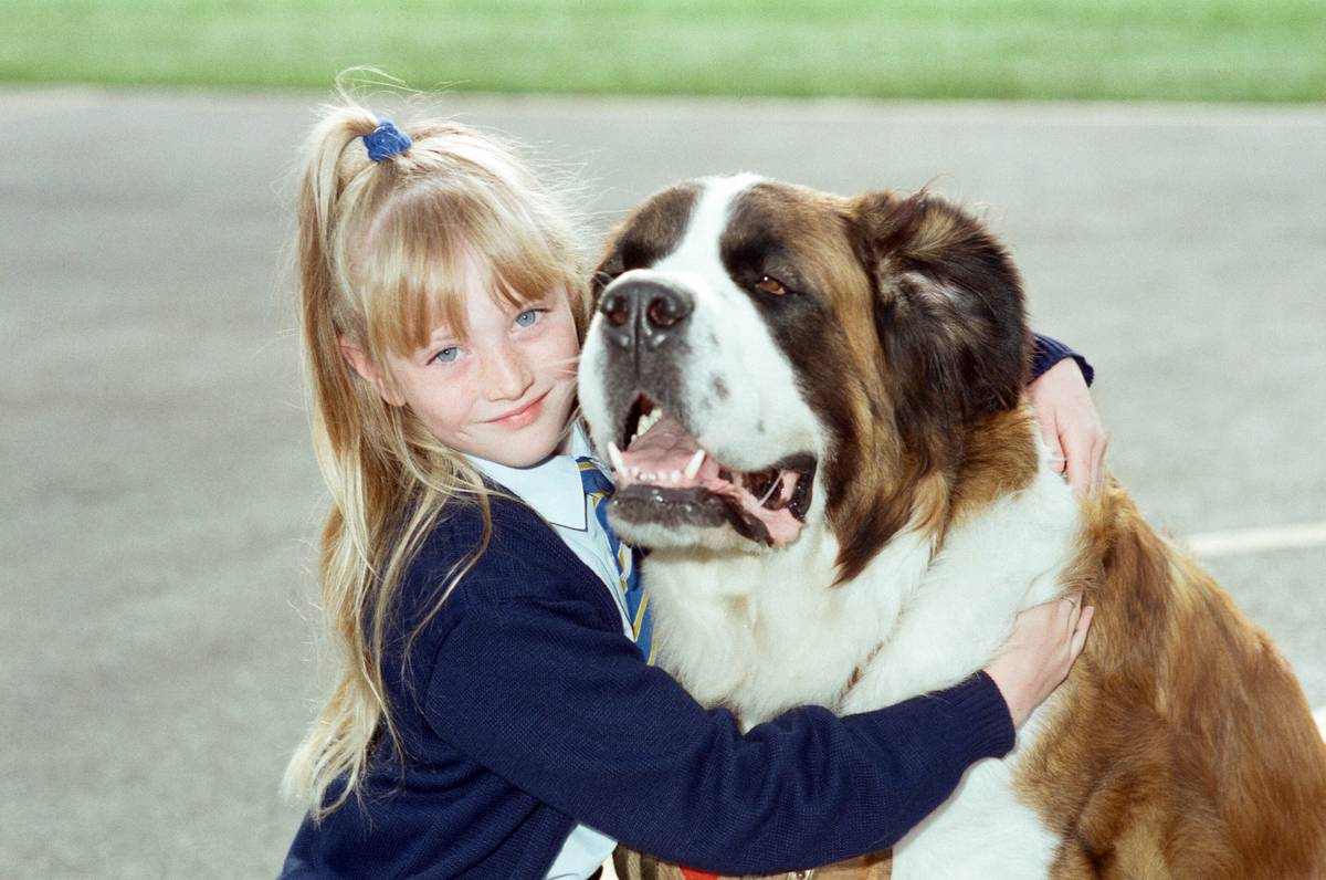 Girl with St Bernard Dog