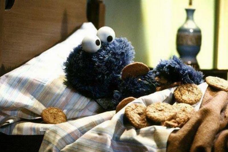 cookie-monster-73426-60590