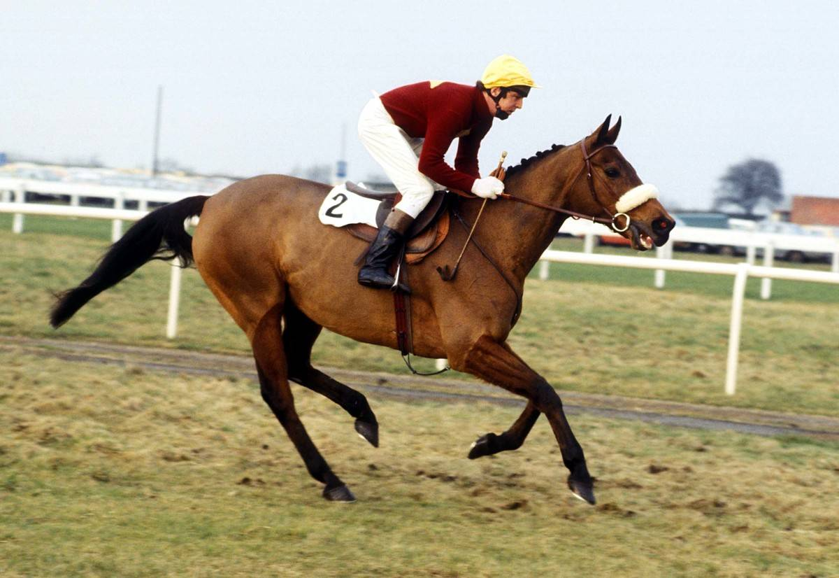 Red Rum competes in a race in 1978.