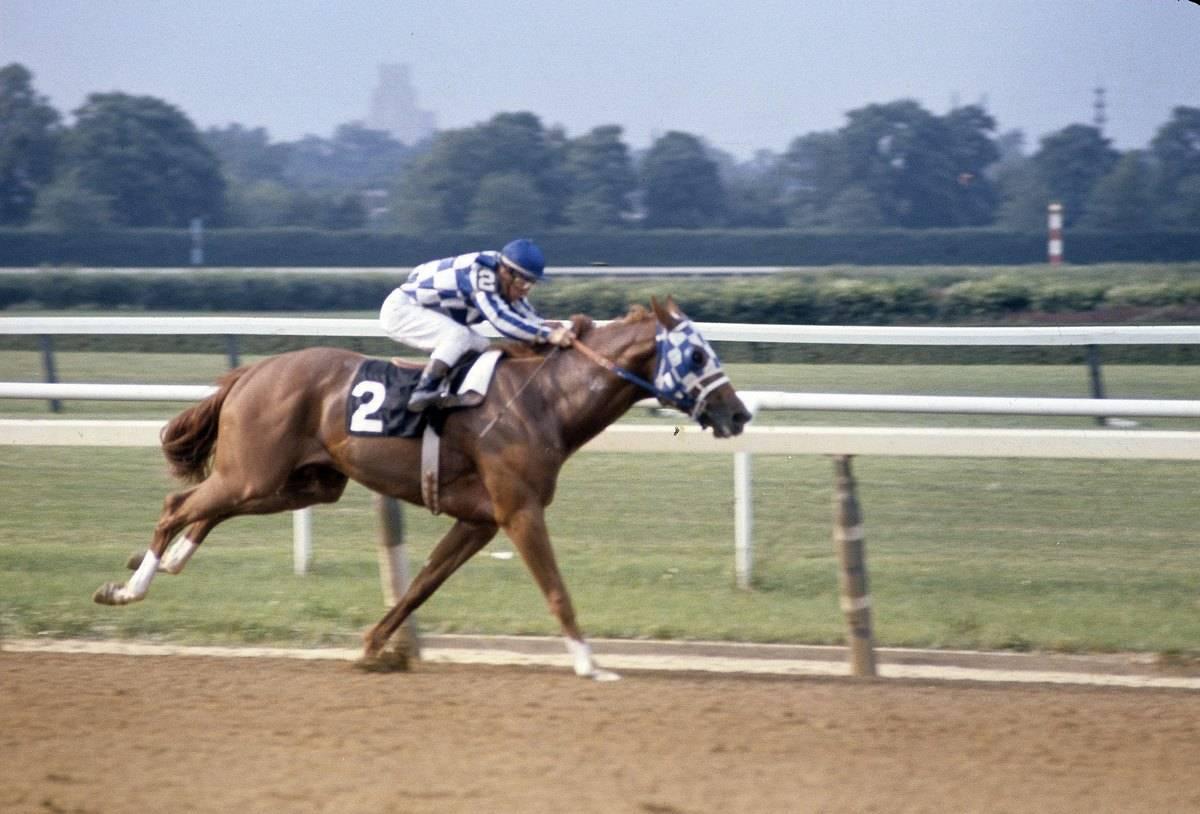 Secretariat runs during a race, 1973.