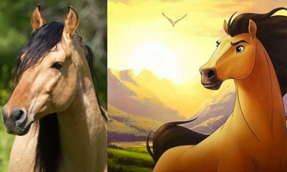 The real horse Spirit (left) is pictured next to the animated one (right).